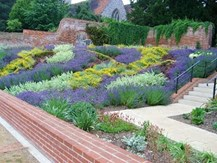 Friends of Caversham Court Gardens
